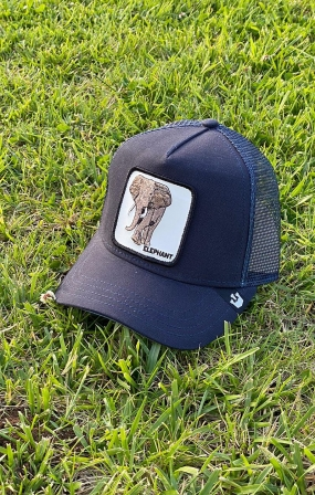 Cappello Elephant Blu - GOORIN BROS
