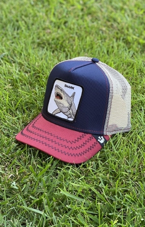 Cappello Shark Blu/Bordeaux - GOORIN BROS